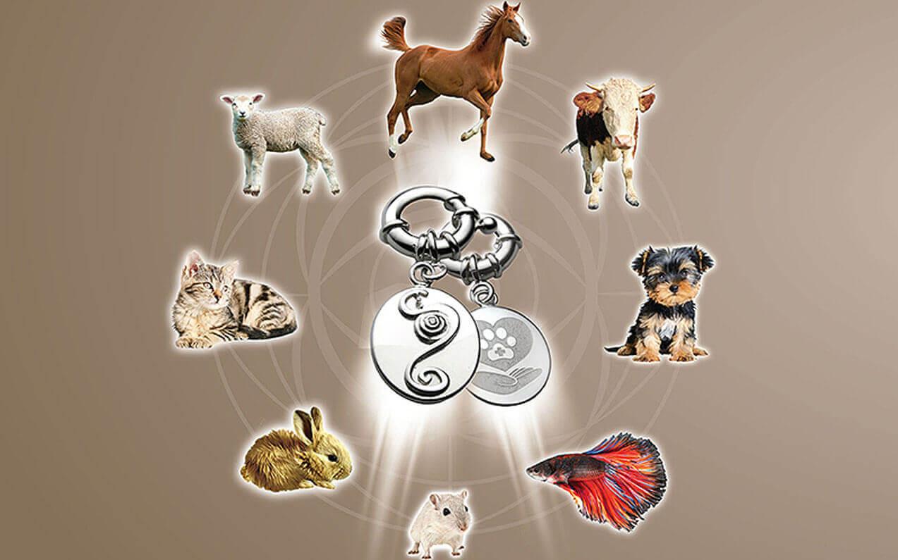 energy pendant for animals elenas 2